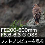 SONY (ソニー) FE 200-600mm F5.6-6.3 G OSS フォトプレビュー