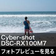 SONY (ソニー) Cyber-shot DSC-RX100M7 フォトプレビュー