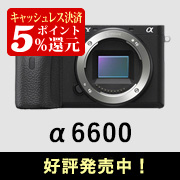 SONY (ソニー) α6600