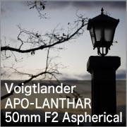 Voigtlander APO-LANTHAR 50mm F2 Aspherical