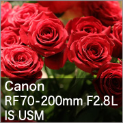 Canon (キヤノン) RF70-200mm F2.8L IS USM
