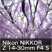 Nikon Z14-30mm F4 S