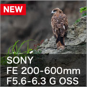 SONY FE 200-600mm F5.6-6.3 G OSS