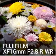 FUJIFILM XF16mm F2.8 R WR