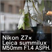 Nikon Z7×Leica summilux M50mm F1.4 ASPH.