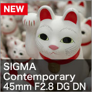SIGMA Contemporary 45mm F2.8 DG DN