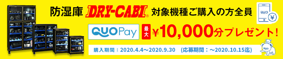 トーリ・ハン ドライキャビ 「QUO-ペイ」最大¥10,000分プレゼントキャンペーン