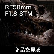Canon RF50 F18stm商品を見る