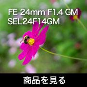 Sony_FE 24mm F1.4 GM商品を見る