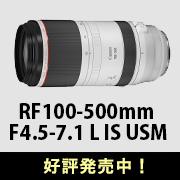 Canon (キヤノン) RF100-500mm F4.5-7.1 L IS USM