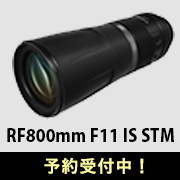 Canon (キヤノン) RF800mm F11 IS STM