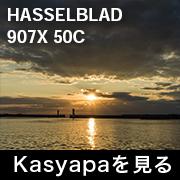 HASSELBLAD 907X 50C フォトプレビュー