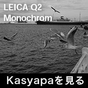 LEICA Q2 モノクローム フォトプレビュー