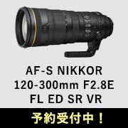 NIKON 120-300mm F2.8