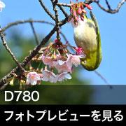 Nikon NIKKOR D780 フォトプレビュー