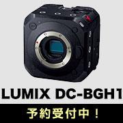 LUMIX DC-BGH1