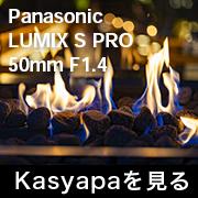 Panasonic LUMIX S PRO 50mm F1.4 フォトプレビュー