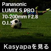 Panasonic LUMIX S PRO 70-200mm F2.8 O.I.S.フォトプレビュー