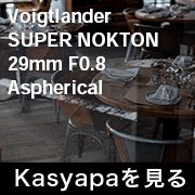Voigtlander SUPER NOKTON 29mm F0.8 Aspherical フォトプレビュー