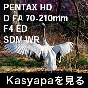 PENTAX HD D FA 70-210 フォトプレビュー