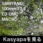 SAMYANG 100mm F2.8 ED UMC MACRO