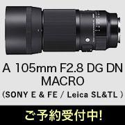 SIGMA Art 105mm F2.8 DG DN MACRO