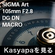 SIGMA Art 105mm F2.8_l フォトプレビュー