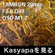 TAMRON 20mm F2.8 DiIII OSD M1:2 フォトプレビュー