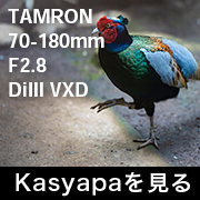 TAMRON 70-180mm F2.8 フォトプレビュー