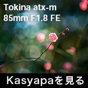 Tokina atx-m 85mm F1.8 フォトプレビュー