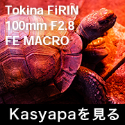 Tokina FiRIN 100mm F2.8 FE MACRO フォトプレビュー