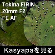 Tokina FiRIN 20mmF2 FE AF フォトプレビュー