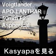 voigtlander APO-LANTHAR 50mm