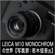 LEICA M10モノクロームの世界【写真家:若木信吾 氏】