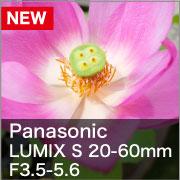 Panasonic (パナソニック) LUMIX S 20-60mm F3.5-5.6 S-R2060