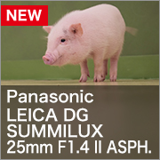 Panasonic LEICA DG SUMMILUX 25mm F1.4 II ASPH.
