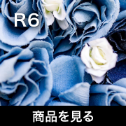 Canon R6 商品を見る