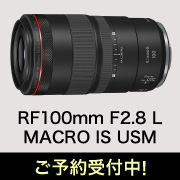 rf100f28l_macro