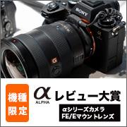 Sony_a1 コミュレビ大賞