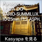 Kasyapa LEICA DG VARIO-SUMMILUX 10-25mm F1.7 ASPH.