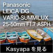 Kasyapa LEICA DG VARIO-SUMMILUX 25-50mm F1.7 ASPH.
