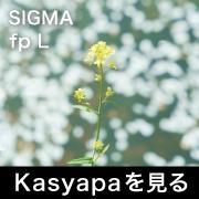 SIGMA fp L