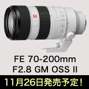 FE 70-200mm F2.8 GM OSS II