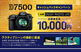 Nikon D7500キャッシュバックキャンペーン