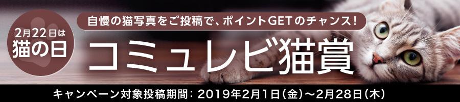 コミュレビ『猫賞』