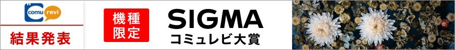 機種限定 SIGMAコミュレビ大賞結果