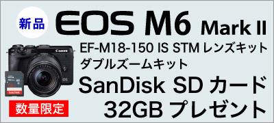 Canon EOS M6 Mark II SDカードプレゼント