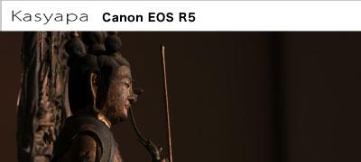 Canon(キヤノン) EOS R5