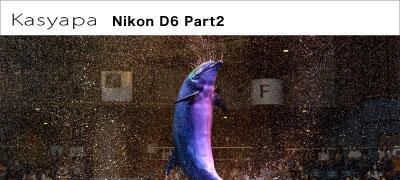Nikon(ニコン)D6