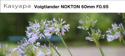 Voigtlander NOKTON 60mm F0.95